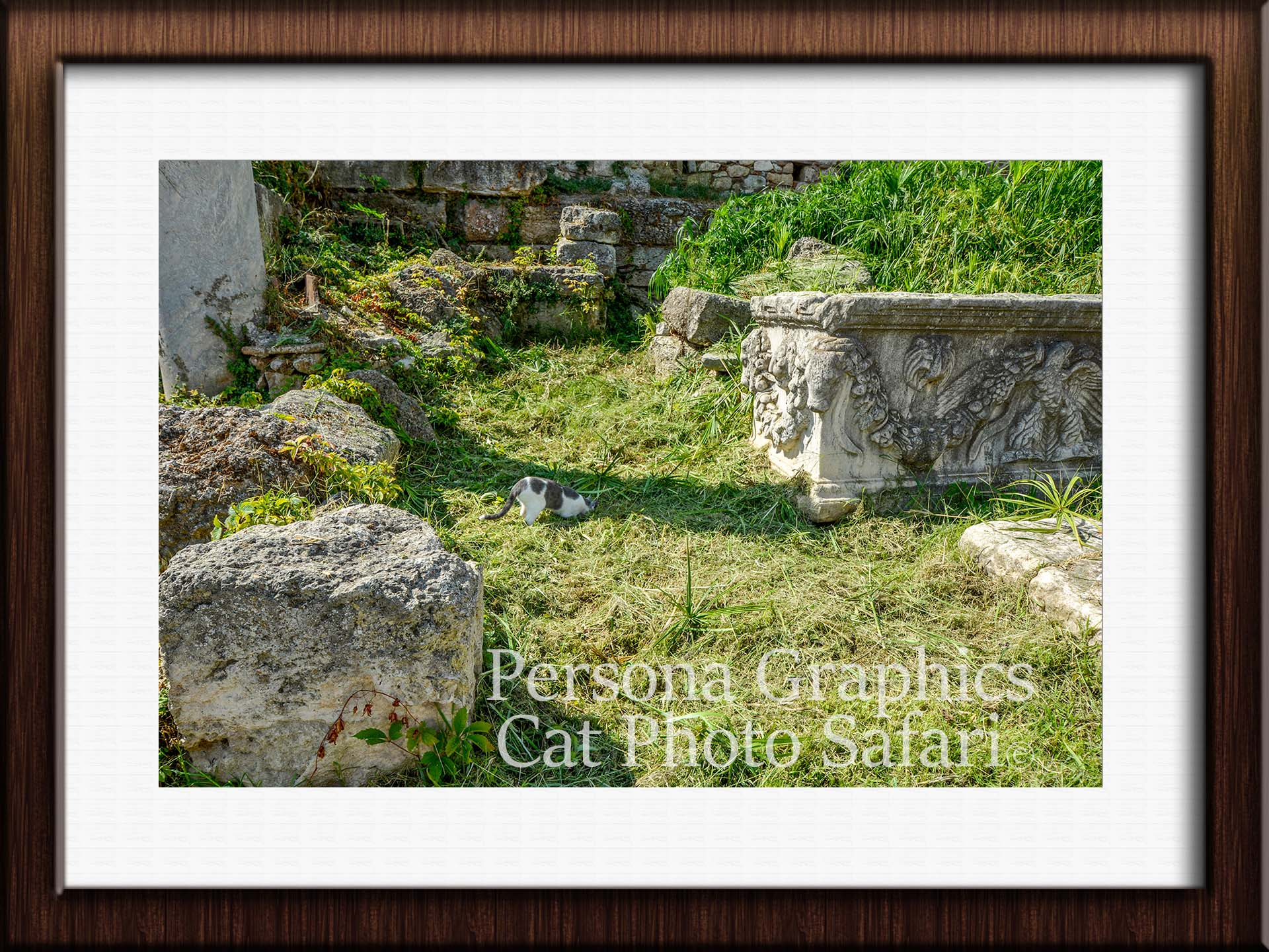 Roman Agora Catf